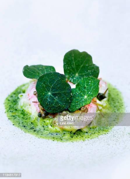 plate of shrimp with herbs and sauce - klein bildbanksfoton och bilder