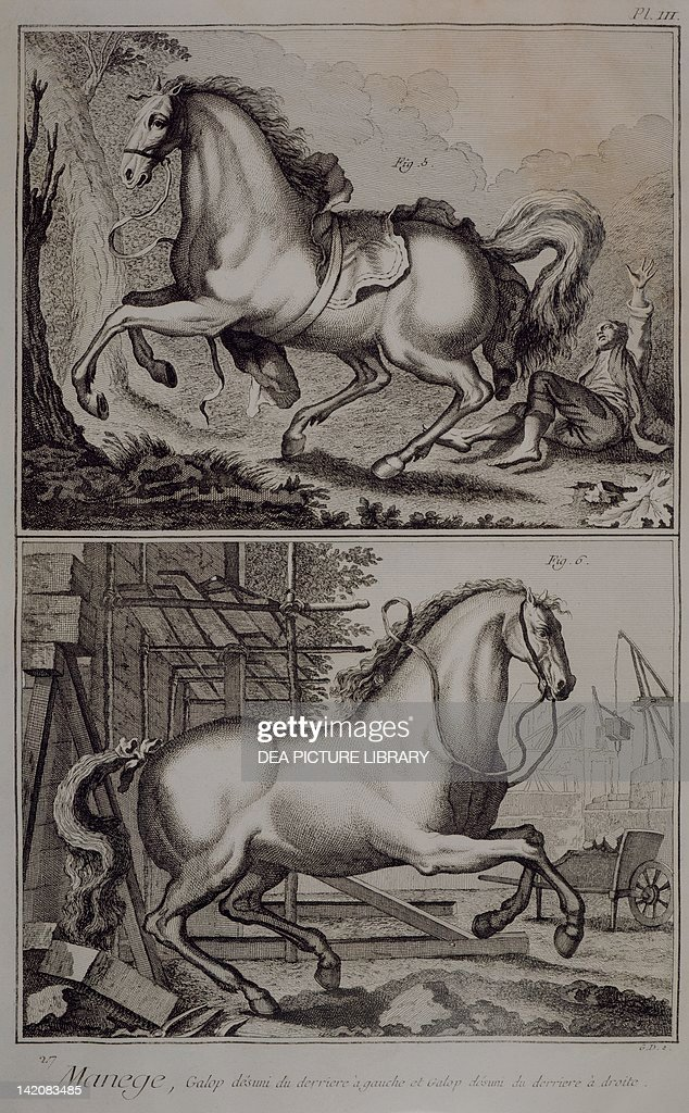 Plate showing horse training : News Photo
