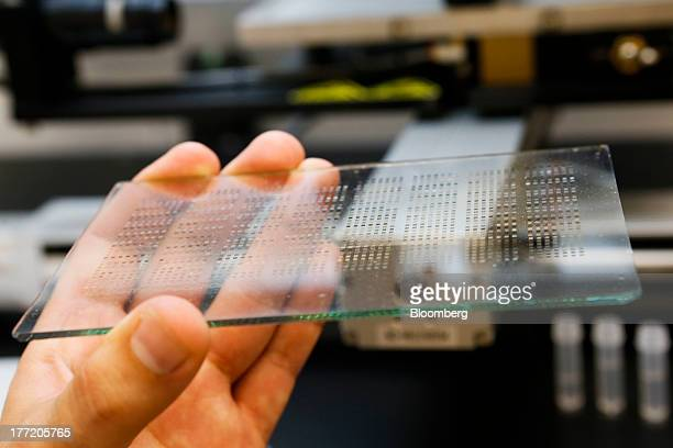 A plate with hundreds of dots each a different formulation of salts made with metals to find the best reactive properties for a solar fuel generating...