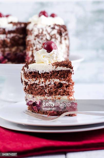 Plate with piece of Black Forest Cake
