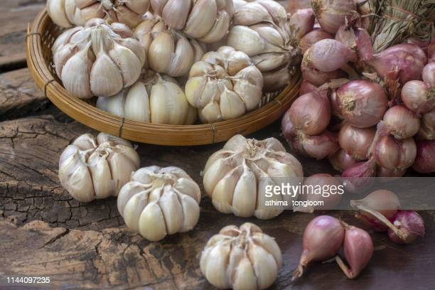 plate with ripe red onions and garlic on light background - allium flower stock pictures, royalty-free photos & images