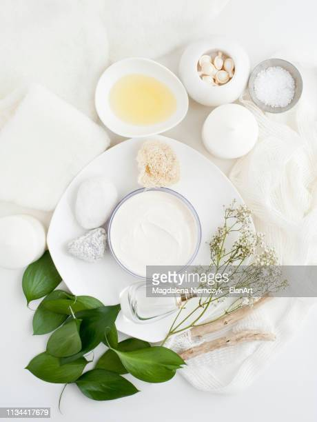 plate with skin cream, plants and leaves - still life not people stock photos and pictures