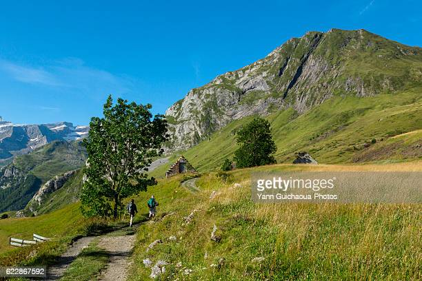 plateau de saugue, hautes pyrenees, france - hautes pyrenees stock pictures, royalty-free photos & images