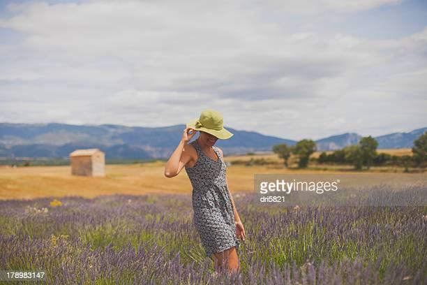 plateau de valensole - alpes de haute provence stock pictures, royalty-free photos & images