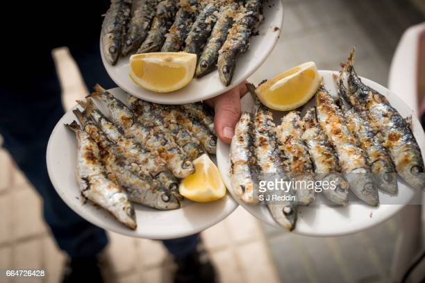 Plates of grilled sardines