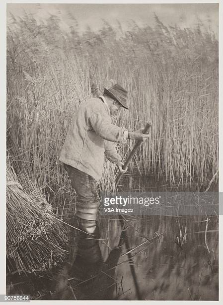 Platinum print Photograph by Peter Henry Emerson T F Goodall An illustration from 'Life and Landscape on the Norfolk Broads'