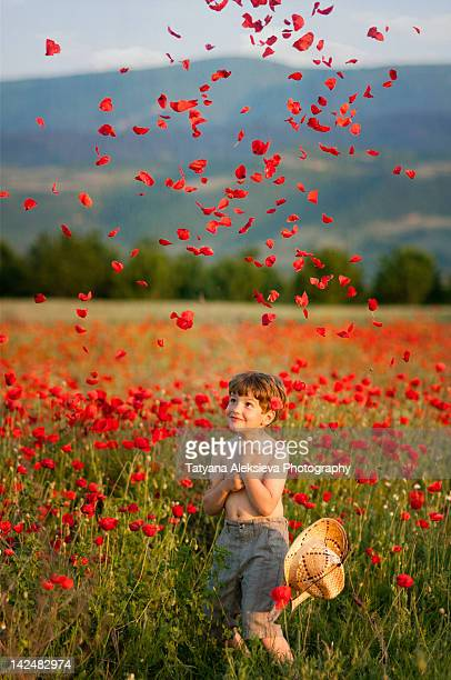 Play in poppies