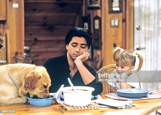 HOUSE 'Play It Again Jess' Season Five 1/7/92 Everyone was too busy which left Jesse to care for Michelle and Comet