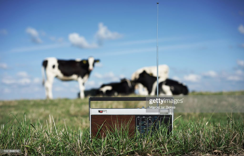 Play that country music : Stock Photo