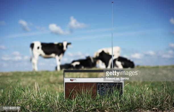 play that country music - émissions de télévision et de radio photos et images de collection