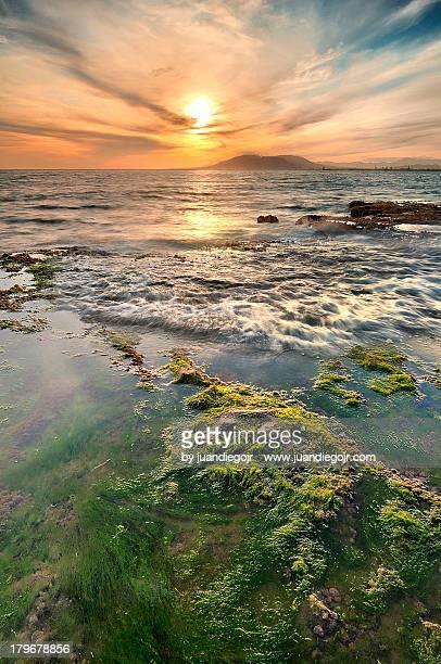 playa de la araña - malaga photos et images de collection