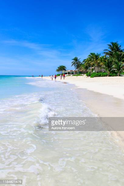 playa del carmen, yucatan, mexico - playa del carmen fotografías e imágenes de stock