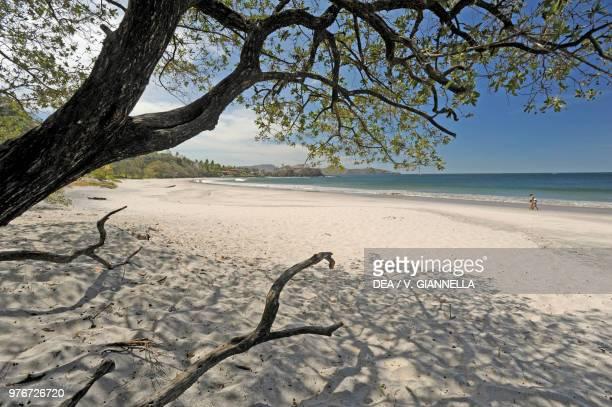 Playa Flamingo beach, Guanacaste, Costa Rica.
