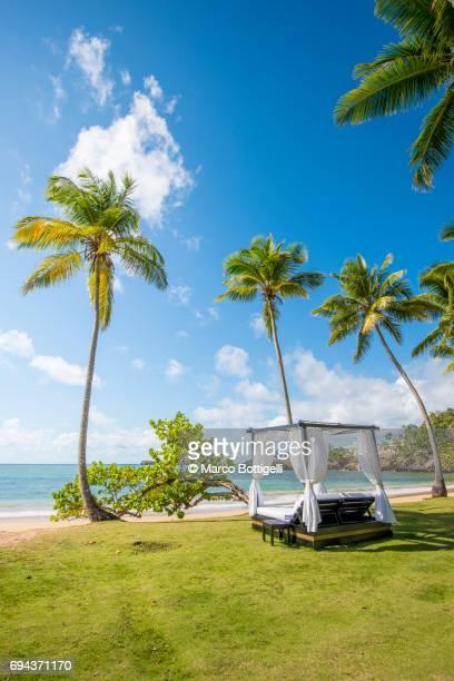 playa moron, las terrenas, samana peninsula, dominican republic. - paisajes de republica dominicana fotografías e imágenes de stock