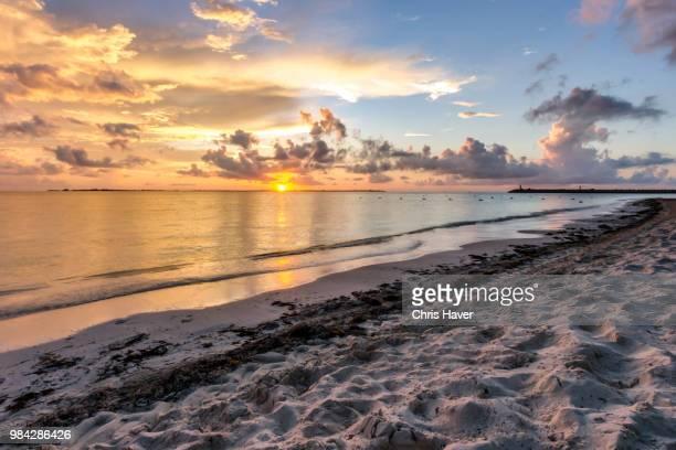 playa mujeres sunrise - mujeres fotos stockfoto's en -beelden