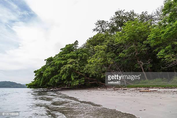playa nacascolo - península de nicoya fotografías e imágenes de stock