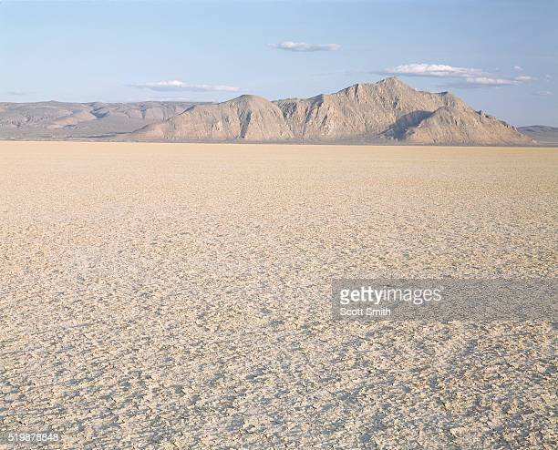 playa of the black rock desert - nevada stock pictures, royalty-free photos & images