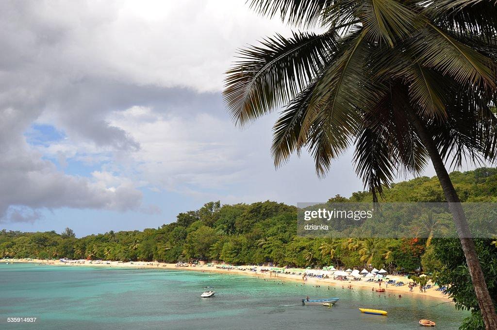 playa sosua a partir de cima : Foto de stock