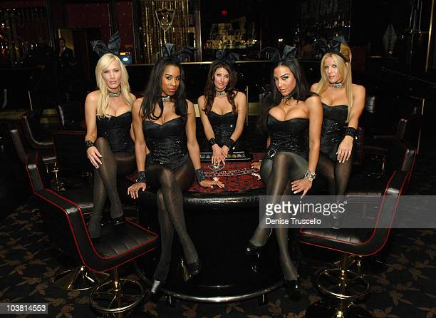 Playboy Bunnies Denise Pernula Chandella Powell Kristy Newman Taina Brito and Lindsey Roeper pose for photos at The Playboy Club at The Palms Casino...