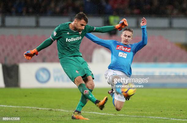 Player of SSC Napoli Marko Rog vies with ACF Fiorentina player Mattia Sportiello during the Serie A match between SSC Napoli and ACF Fiorentina at...