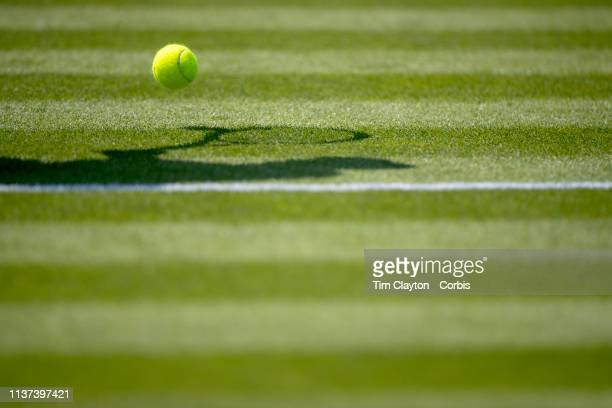 A player retrieves a tennis ball on a grass court at Wimbledon during the Wimbledon Lawn Tennis Championships at the All England Lawn Tennis and...