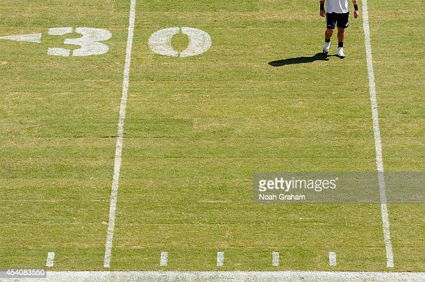 A player warms up on the new turf before the San Francisco 49ers play against the San Diego Chargers during a preseason game at Levi's Stadium on...