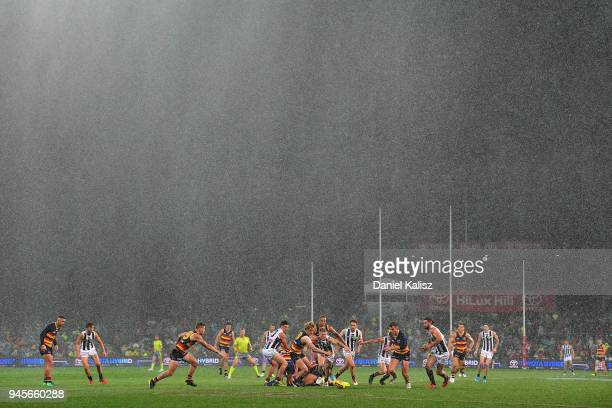 Players compete for the ball in the pouring rain during the round four AFL match between the Adelaide Crows and the Collingwood Magpies at Adelaide...