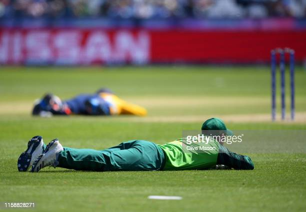 Players lay down on the pitch to avoid a swarm of bees during the Group Stage match of the ICC Cricket World Cup 2019 between Sri Lanka and South...
