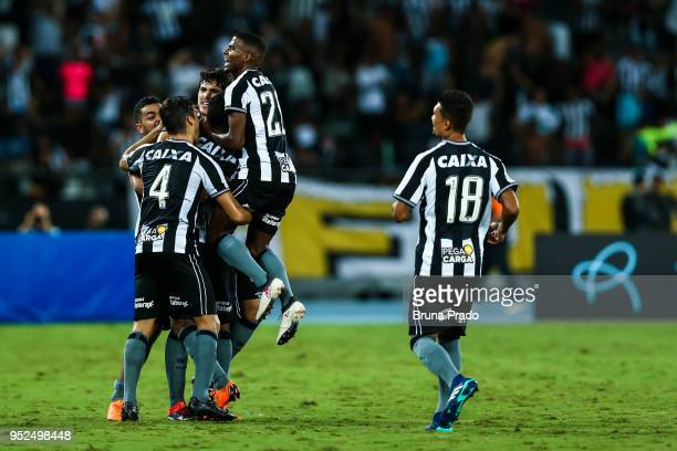 Players of Botafogo celebrates a scored goal during the Brasileirao Series A 2018 match between Botafogo and Gremio at Engenhao Stadium on April 28...