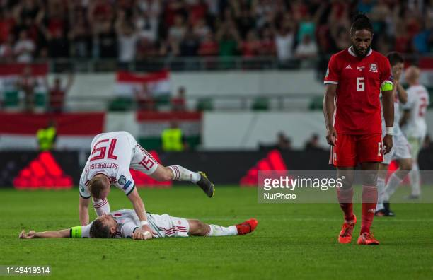 Players of Hungarian Team celebrate their final win over Wales after the Hungary and Wales European Qualifier match at Groupama stadium on June 11...