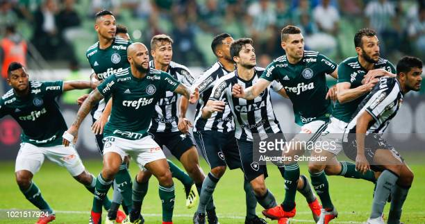 Players of Palmeiras and Botafogo struggle during the match for the Brasileirao Series A 2018 at Allianz Parque Stadium on August 22 2018 in Sao...