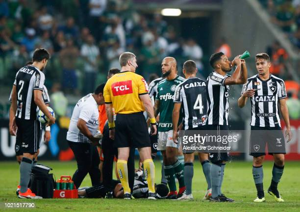 Players of Palmeiras and of Botafogo in action during the match for the Brasileirao Series A 2018 at Allianz Parque Stadium on August 22 2018 in Sao...
