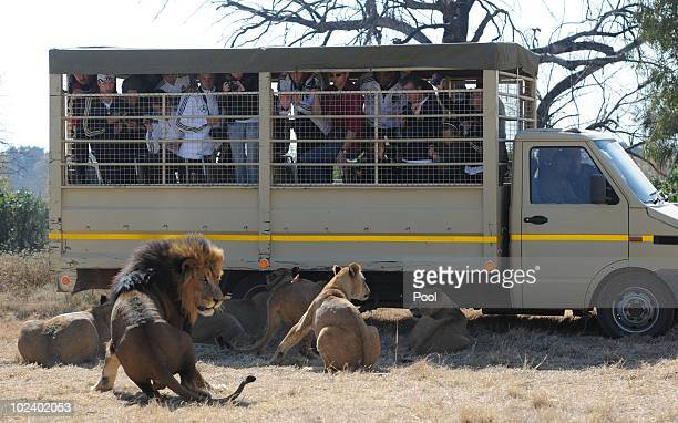 Players of the German national football team take photos while driving with a van during a visit of the Lion Park on June 25 2010 in Lanseria South...