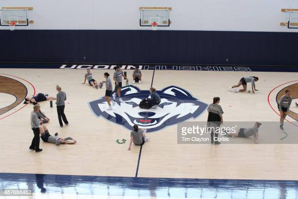 Players warming up under the supervision of strength coach Amanda Kimball'nduring the UConn Huskies women's basketball team training at the Werth...