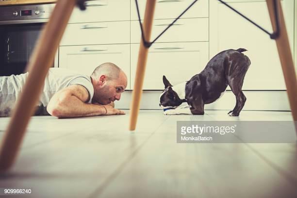 speelse hond en haar eigenaar op de verdieping - alleen één mid volwassen man stockfoto's en -beelden