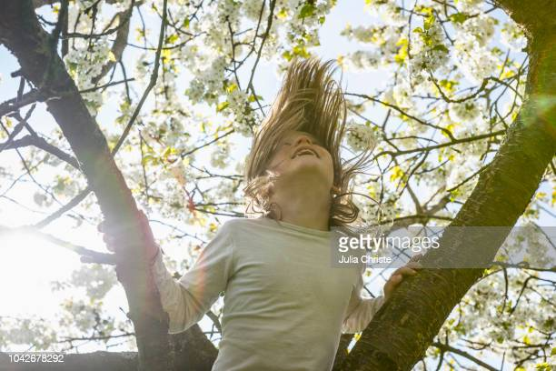 playful girl climbing spring tree - apple blossom tree stock pictures, royalty-free photos & images