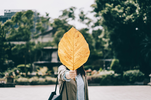 Playful girl covering face behind fallen yellow leaf in park - gettyimageskorea