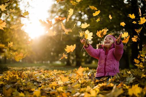 Playful kid throwing up leaves in park - gettyimageskorea