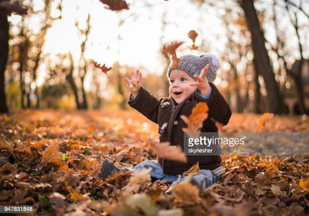 playful little boy having fun while throwing autumn leaves in the air. - young leafs stock photos and pictures