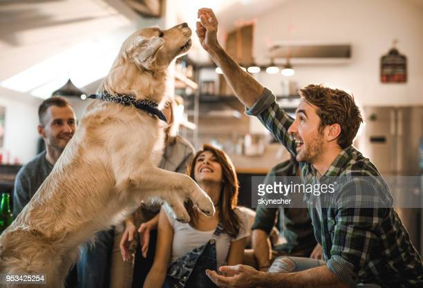 Playful man having fun with his dog at home with friends.