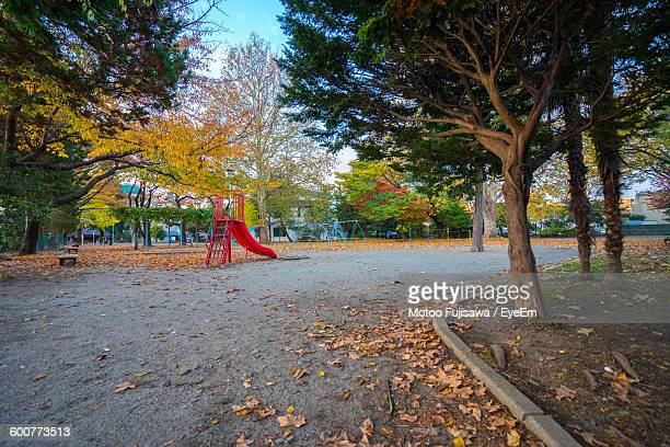 Playground And Trees In Park