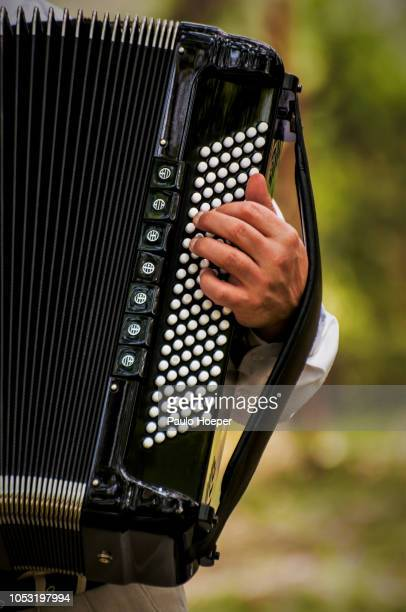 playing accordion - accordion instrument stock pictures, royalty-free photos & images