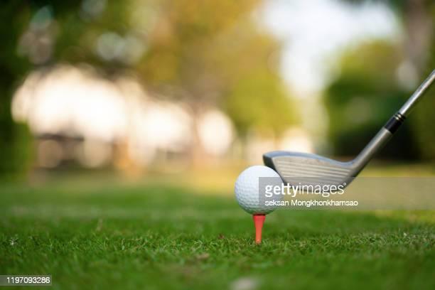 playing golf. golf club and ball. preparing to shot - eagle golf stock-fotos und bilder