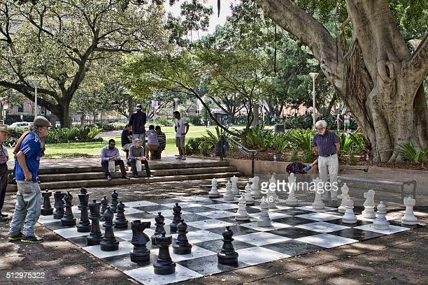 Playing large size chess in Hyde Park in Sydney