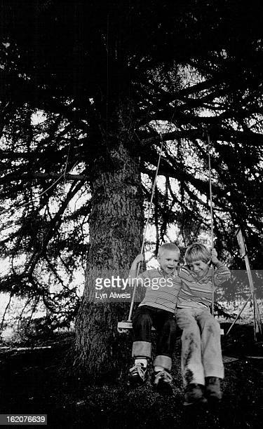 OCT 26 1985 OCT 28 1985 NOV 3 1985 Playing on a swing in their hideaway under a hugh pine at Daniel's rented house