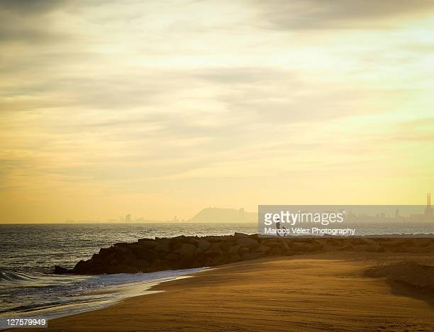 playing on beach - mid distance stock pictures, royalty-free photos & images