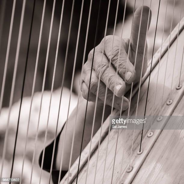 playing the harp - stringed instrument stock pictures, royalty-free photos & images