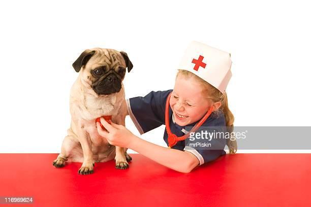 Jugando veterinario con perro cachorro