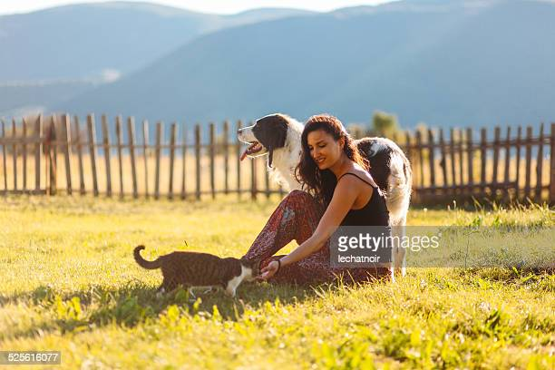 playing with cats and dogs in the beautiful outdoors - dog and cat stock photos and pictures