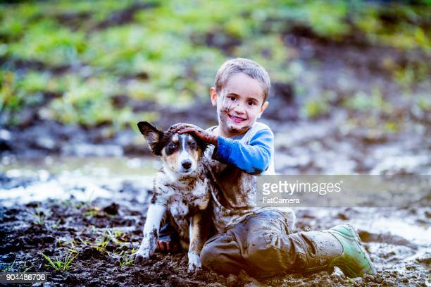 playing with dog in the mud - naughty america foto e immagini stock